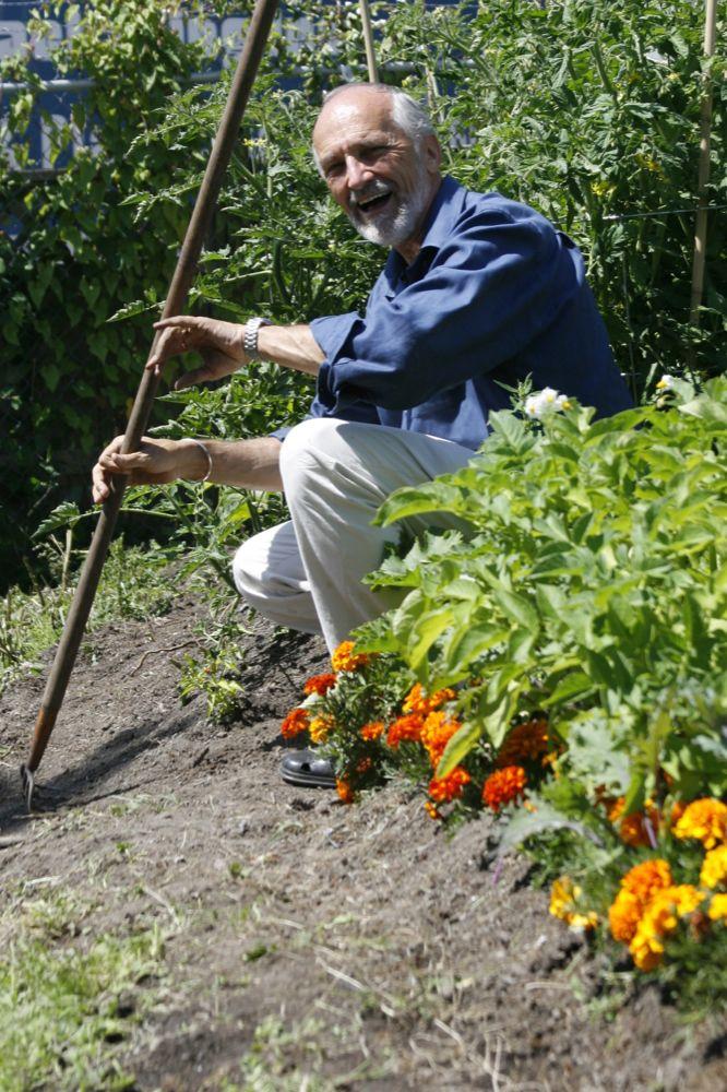 Natures Path Gardening